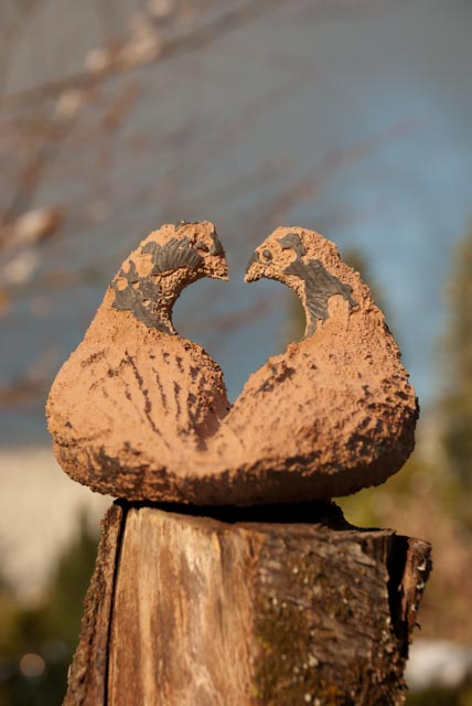 lovebirds photo Heather Ross